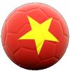 vietnam soccer ball flag logo white